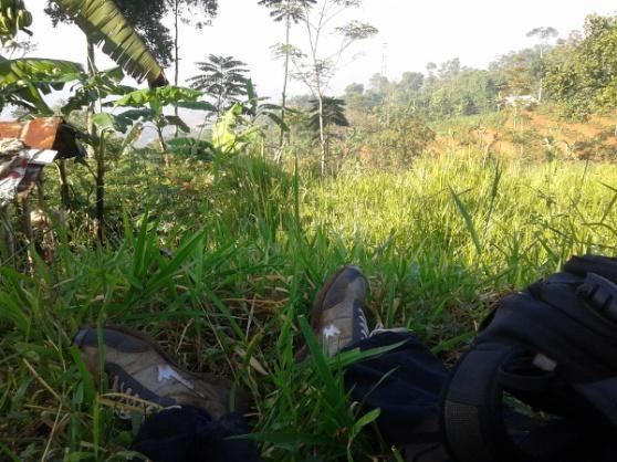 Ambil nafas dulu di antara semak belukar perkebunan, semoga tidak pingsan ditempat :))