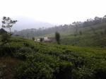 11. Proyek baru, geoThermal di kaki gunung Tangkuban Parahu