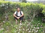 9. Banyak bunga di kebun teh, tapi aku bukan kumbangnya yah...